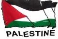 في فلسطين: الحاجة أم الإختراع