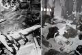 قتل جميع أهلها بأطنان من القنابل الفرنسية.. قصة القرية التي وحدت دماء التونسيين والجزائريين