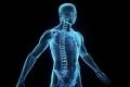 حقائق تثبت أن جسم الإنسان أكثر الأنظمة غموضا في العالم