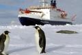 القارة القطبية الجنوبية... أرض عذراء يطمع فيها الإنسان