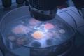 """مغربية تحقق المستحيل باكتشاف """"يحل ألغاز الكون"""""""