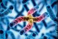 هل جيناتنا فقط هي ما يحدد صفاتنا ؟