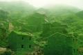 بعد هجر سكانها لها: الطبيعة تسترد قرية صيد منسية وتكسوها بالأخضر!