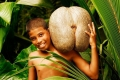 هل تعرف «نارجيل البحر» أو «جوز الهند البحري»، تلك الفاكهة النادرة والمحرّمة