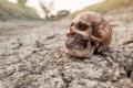 """""""عظام الموتى"""" تظهر بشكل مفاجئ في مقبرة أردنية... بالصور"""