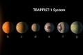 في مؤتمر تابعه الملايين - ناسا تعلن اكتشاف 7 كواكب جديدة تشبه الأرض