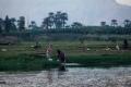 حياة ملايين المصريين في خطر لزيادة الملح في مياه دلتا النيل