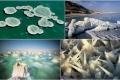 كما لم نعرفه من قبل... بالصور: ظهور تشكيلات ملحية غريبة جداً في البحر الميت