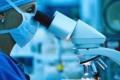 علماء يبتكرون خلية شمسية بحجم شعرة الرأس