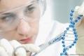 علماء: التعديل الجيني ممكن مستقبلاً لكن بشروط!