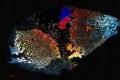 ميكروبات أطلانتس المفقودة.. حياة قاسية تحت قاع المحيط