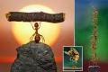 صور مذهلة تظهر تفوق النمل على الإنسان في رفع الاثقال