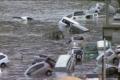 265 مليار دولار خسائر الكوارث الطبيعية في النصف الأول من العام
