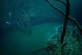 شاهد الصور ... ظاهرة غريبة جداً.. اكتشاف نهر تحت المياه بالمكسيك