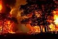 ارتفاع الحرارة يتسبب في أشعال آلاف الحرائق في العالم