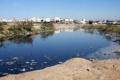 غزة تشرب الماء الآسن بحلول عام 2016