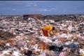 من هو العدو الأكبر للبيئة .... البلاستيك أم الورق؟