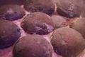 اكتشاف علمي مثير بشأن بيض الديناصورات