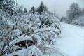الثلوج تشل الحياة فى فرنسا ومطار هيثرو يلغى 1300 رحلة بعد ارتفاع نسبة الثلوج