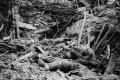 هكذا دفن انفجار 10 آلاف جندي ألماني أحياء بالحرب الكبرى