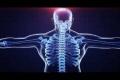 12 جزءا من جسم الإنسان بلا فائدة