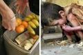 المبذرين إخوان الشياطين...7.2 مليون طن يأكلها الدود... نفايات البريطانيبن من الأطعمة تبلغ 20 مليار دولار ...