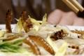 يابانيون يصطفُّون أمام أحد المطاعم لتناول معكرونة بالحشرات وأرز بالصراصير
