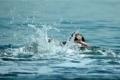 مصرع طفل غرقا في غزة