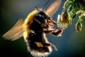 """حشرات العالم في خطر.. و""""مخرج وحيد"""" من الأزمة"""