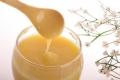 فوائد غذاء ملكات النحل هل تجعله الغذاء الخارق؟