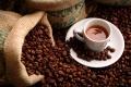 نهاية القهوة.. لماذا قد تنفد حبوب البن من العالم قريبًا؟