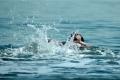 مصرع الشاب أحمد عقل غرقاً في بحر غزة