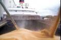 """مجلس الحبوب الأمريكي: """"شحنات الحبوب الأوكرانية الموجهة للجزائر تجابه صعوبات بصورة متزايدة"""""""