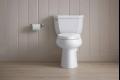 هل تساءلت من قبل مَن اخترع الحمام؟