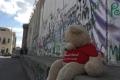 """فيديو  الدب """"بنو"""" ينقل تفاصيل الحياة اليومية في فلسطين إلى العالم"""