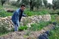 المزرعة الإنسانية في مزارع النوباني...فلسفة لحياة مستدامة بتوقيع سعد داغر