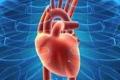 أول إنسان يعيش بمساعدة طلمبتين عقب استئصال قلبه