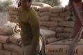 بالفيديو.. جميلة الفلسطينية تعمل في عتالة الإسمنت لتقهر ظروف الحياة
