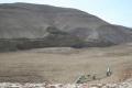 بالصور: سد العوجا الترابي.. الأول في فلسطين لتجميع مياه الأمطار