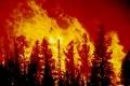إسبانيا.. إخلاء 1800 شخص بسبب حريق