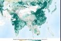 بالصور  الأرض أكثر خضرة مما كانت عليه قبل 20 عامًا