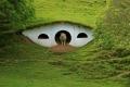 أغرب من الخيال... هكذا تعيش الخرفان في قرية lord of the Rings بنيوزيلاندا