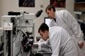 اكتشاف جديد يمنع الإصابة بأمراض القلب نهائيًا