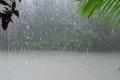 الشتاء والأمطار تعود إلى فلسطين بإذن الله