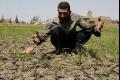 أطلس يبين التغيرات البيئية في الوطن العربي الهش مناخياً