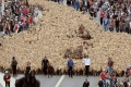 بالصور... مارسيليا تحتفل بأنها عاصمة الثقافة الأوروبية بامرأة تمتطي 3 خيول وتقود 3.000 خروف