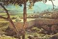 شكيم ( تل بلاطة ) التاريخي في طريقه من لائحة التراث العالمي