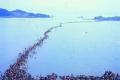 """شاهد بالصور ...""""معجزة انشقاق البحر بسيدنا موسى تتكرر"""" فى كوريا"""