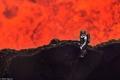 تخيل شكل الحياة مع حرارة 1100 درجة مئوية!!... شاهد بالفيديو مغامر في قلب الحمم البركانية
