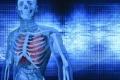 ما هي أجزاء جسم الإنسان التي لا تتوقف عن النمو؟